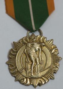 1916 service medal